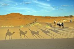 Путешествие верблюда trekking в морокканской пустыне Сахары Стоковое Изображение RF