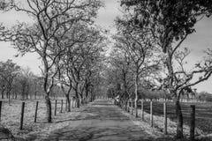 путешествие длиной стоковые фотографии rf