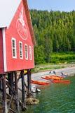 Путешествие каяка пункта пролива Аляски ледистое Стоковые Изображения