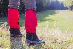 Путешествие леса весной, в соотвествующей одежде Стоковые Фото