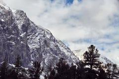 Путешествие через горы Altai к Aktru Пеший туризм к снежным пикам гор Altai Выживание в жестких условиях, красивая природа Стоковая Фотография RF