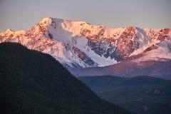 Путешествие через горы Altai к Aktru Пеший туризм к снежным пикам гор Altai Выживание в жестких условиях, красивая природа Стоковое Изображение