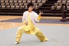 путешествие 2010 kung героев fu итальянское Стоковое Фото