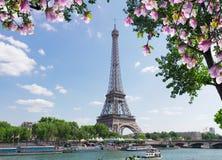 Путешествие Eiffel над Рекой Сена Стоковые Изображения