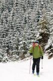 путешествовать зима стоковое фото rf