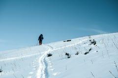 Путешествовать лыжи Человек взбирается вверх холм спорт снежка лыжи отслеживает зиму стоковая фотография rf