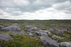 Путешествовать через красивую Ирландию весной 2016 Стоковые Изображения RF