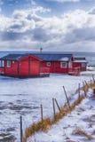 Путешествовать через острова Lofoten Линия традиционных красных домов стоковые фото