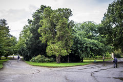 2 пути в Jardin des Plantes в Тулуза Стоковые Фотографии RF