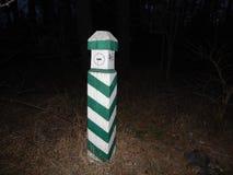 Пути и лесохозяйство леса ночи стоковые изображения