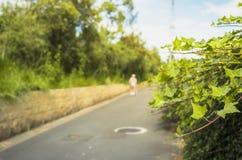Пути прогулки Стоковые Изображения RF