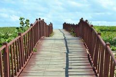 пути Стоковое Фото