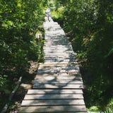 Путь более менее путешествованный мимо Стоковые Фото