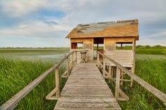 Путь болота идя Стоковая Фотография