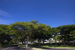 путь валов голубого неба переулка Стоковая Фотография