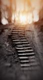 Путь вверх, к свету Стоковое Фото
