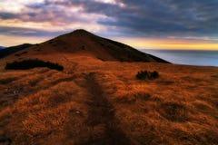 Путь вверх по холму Стоковая Фотография