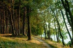 Путь вдоль воды Стоковые Фотографии RF