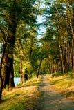 Путь вдоль воды Стоковая Фотография RF