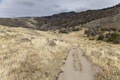 Путь вдоль национального парка glaciares los Стоковые Фотографии RF