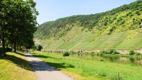 Путь вдоль реки Мозель около городка Cochem стоковое изображение