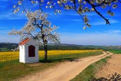 путь весны Стоковое фото RF