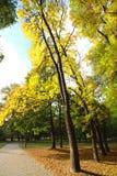 Путь велосипеда в парке осени Стоковая Фотография
