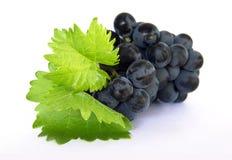 путь виноградин клиппирования зрелый Стоковые Изображения