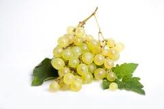 путь виноградин клиппирования пука включенный стоковые фотографии rf