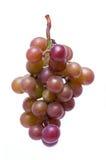 путь виноградин клиппирования Стоковые Фотографии RF