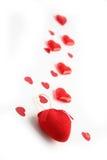 путь влюбленности Стоковые Фотографии RF