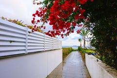 Путь водя к пляжу в Ларнаке Стоковые Фото