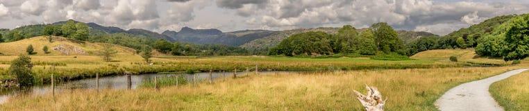 Путь водя через поле к лесу и горам стоковая фотография rf