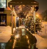 Путь входа Lite в зиме стоковые изображения rf