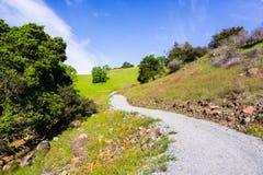 Путь выровнянный вверх с wildflowers, заповедником открытого пространства Rancho San Vicente, частью парка графства Calero, Santa стоковая фотография rf
