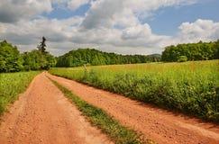 Путь в выгонах Стоковые Фото