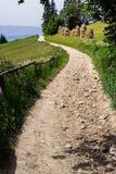 Путь в горе Стоковое фото RF