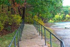 Путь в древесины Стоковые Фото