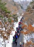 Путь в держателе Longtan на утре зимы Стоковое фото RF