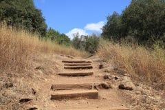 Путь в заповеднике Banias, Golan стоковые изображения rf