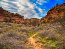 Путь в каньон стоковое изображение rf