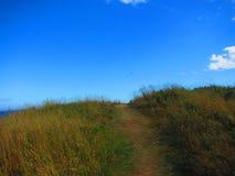 Путь в луге над холмом Стоковые Фотографии RF