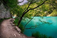 Путь в озерах Plitvice национального парка Стоковая Фотография RF