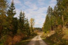 Путь в осени Стоковая Фотография RF