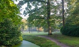Путь в осеннем парке Стоковые Изображения RF