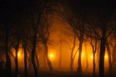 Путь в парке ночи Стоковые Фотографии RF