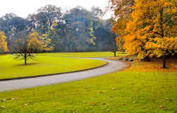 Путь в парке осени. Стоковые Изображения