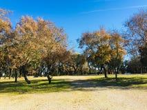 Путь в парке, Фатима, Португалия, Европа стоковые фото