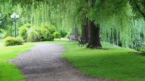 Путь в парке Стоковое Изображение