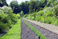 Путь в саде коттеджа вполне красочных цветков, кустарников, деревьев Стоковое Изображение